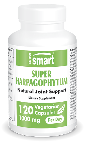 Super Harpagophytum Supplement