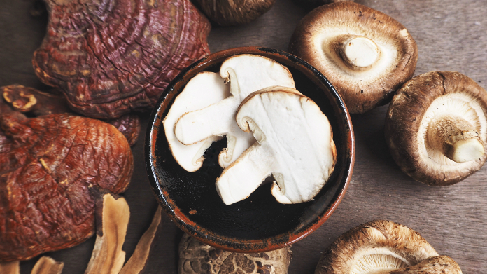 Reishi and shiitake medicinal mushrooms