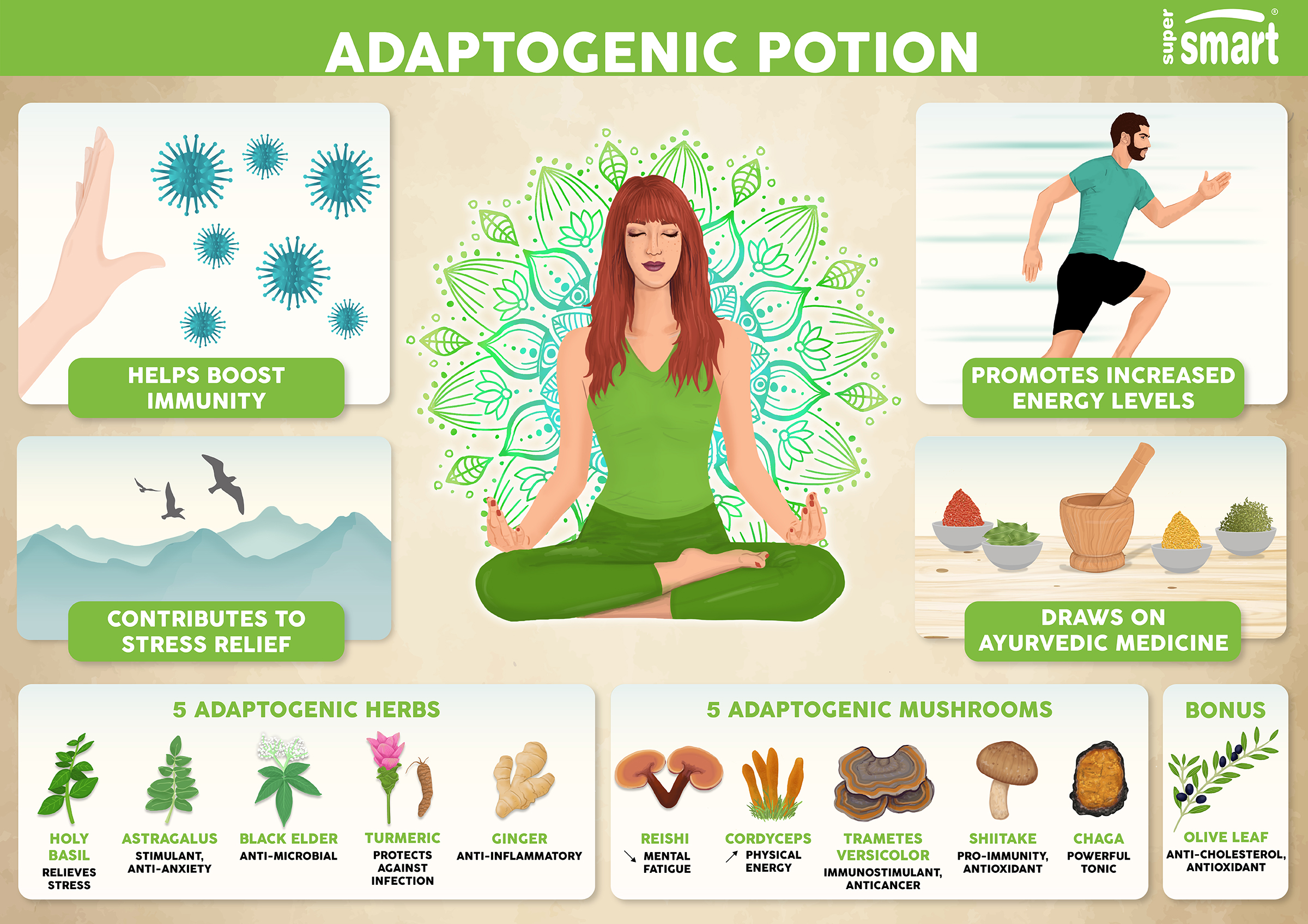 Illustration of the benefits of Adaptogenic Potion